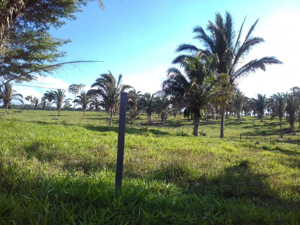 Quinta propiedad agrícola en Venta San Javier - Propiedad Ganadera Foto 1