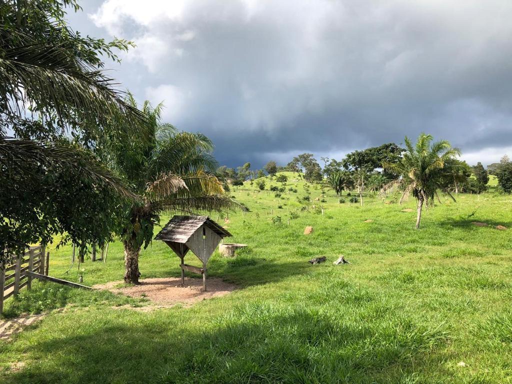 Quinta propiedad agrícola en Venta San Javier - Propiedad Ganadera Foto 4
